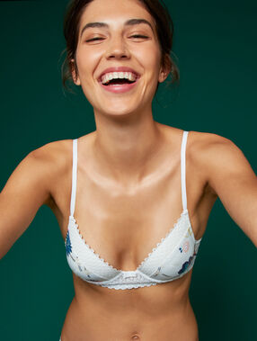 Bra no. 2 - microfiber plunging push-up bra print on off-white background.